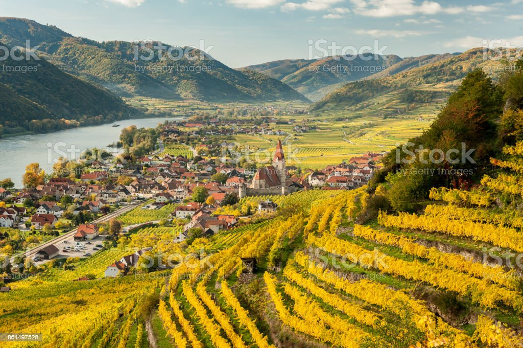 Weissenkirchen Wachau Austria in autumn colored leaves and vineyards on a sunny day stock photo