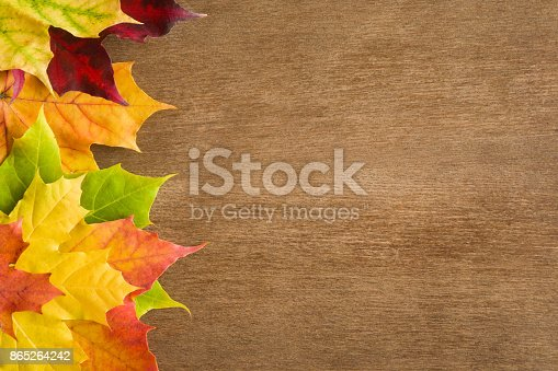 istock Welcome autumn. Greeting card or web background with colorful maple leaves. Mock up for holiday post cards and seasonal offers as advertising or other ideas. Empty place for a text or object. 865264242