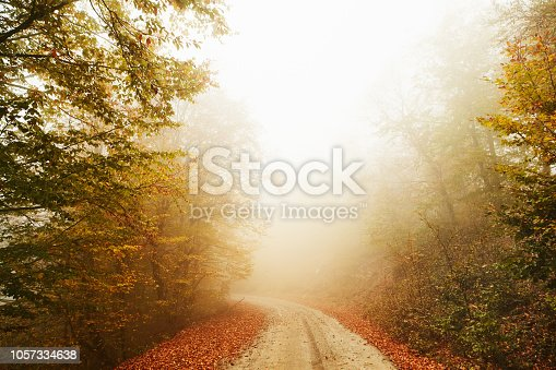 istock welcome autumn 1057334638