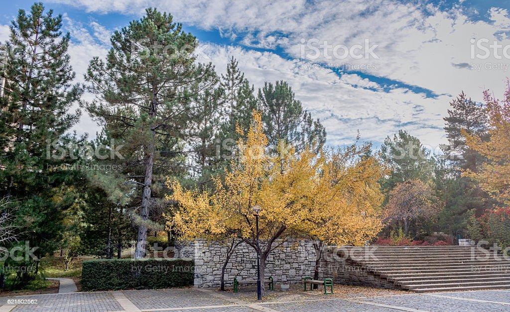 Benvenuto autunno foto stock royalty-free