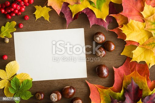istock Welcome autumn. White blank autumn greeting card with colorful maple leaves and chestnuts. Mock up for holiday post cards and seasonal offers as advertising. Empty place for a text. Top view. 865271482