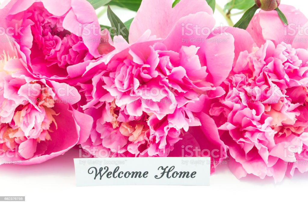 Welcome Home Card with Bouquet of Pink Peonies royalty-free stock photo