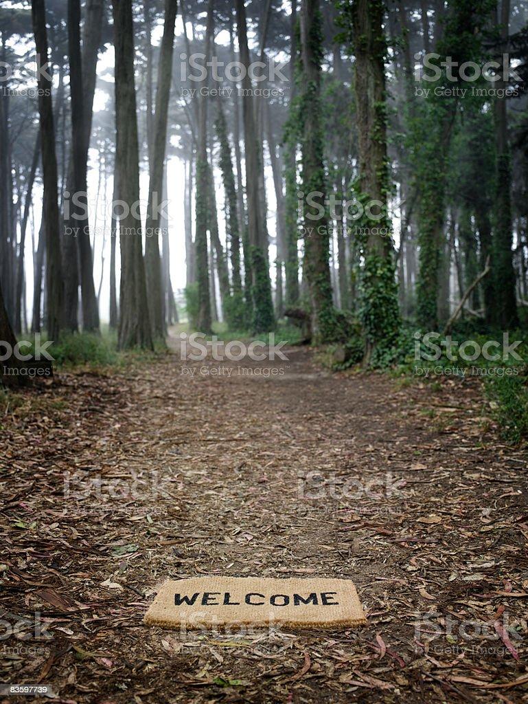 Witaj mat na ziemi po wejściu do forest zbiór zdjęć royalty-free