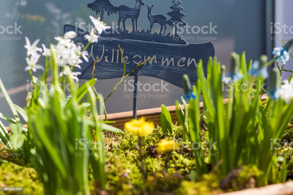Welcome spring royalty-free stock photo