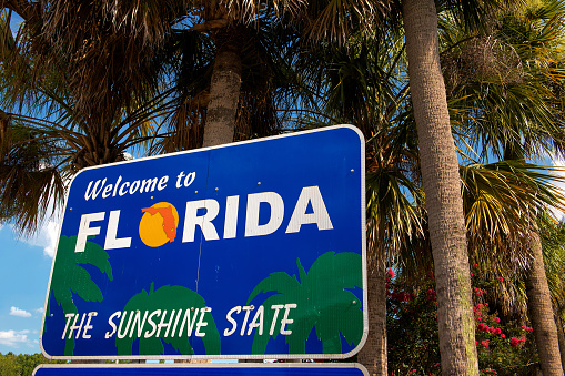 Welcome to Florida sign with palm trees in background