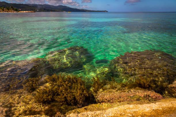 Willkommen auf Jamaica Beach – Foto