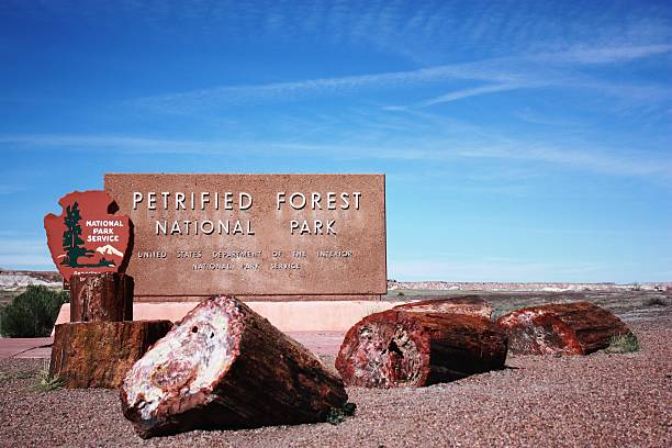 Welcome to Petrified Forest National Park in Arizona, Route 66 Petrified Forest National Park in Arizona, Route 66 USA colorado plateau stock pictures, royalty-free photos & images