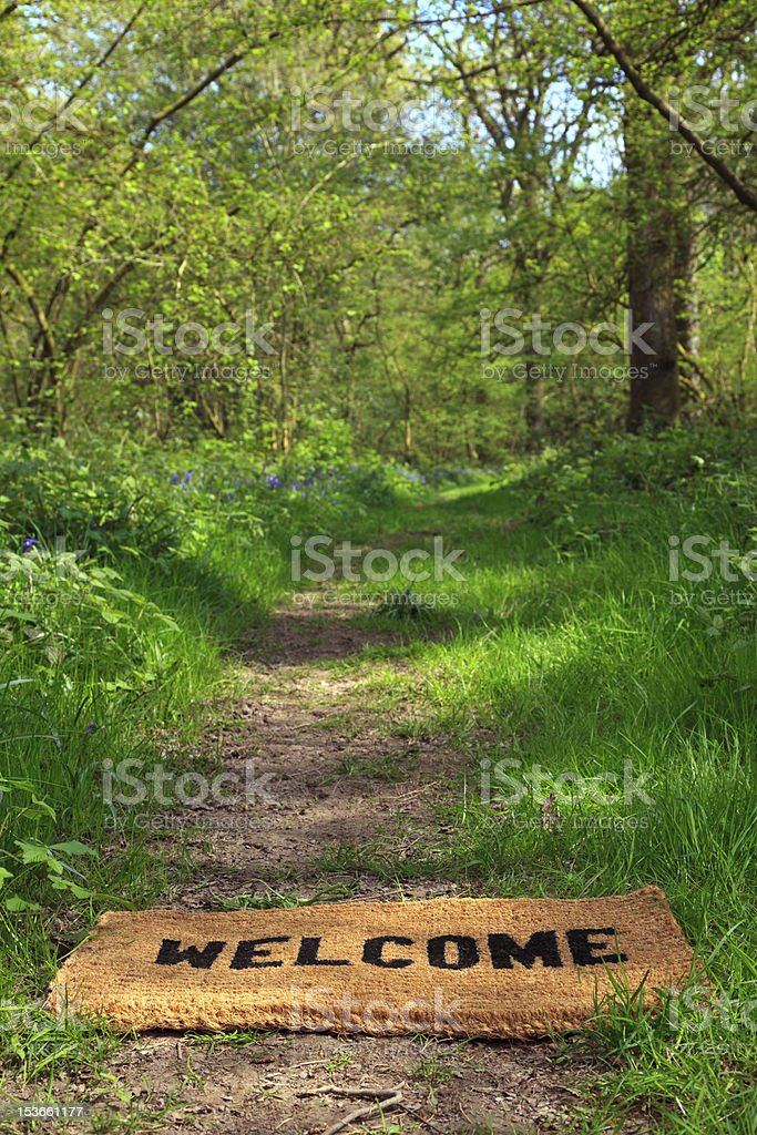 Welcome to the spring woodland vertical. royalty-free stock photo