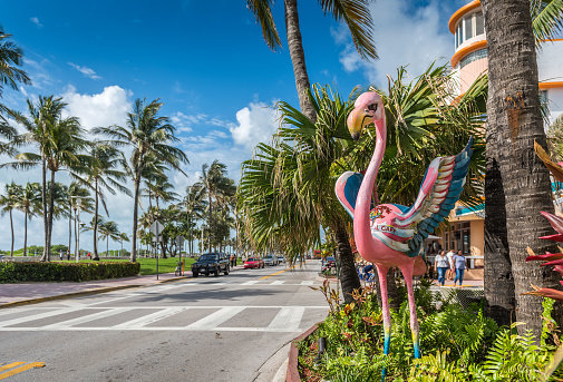 Miami Beach, Florida, USA - May 22, 2016: Colorful flamingo welcomes to tourist by Ocean Drive at South Beach Miami in the historic Art Deco District with hotels, restaurant and people. South Beach has been a notable tourist destination for many years.