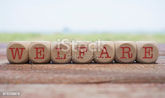 Welfare word written on cube shape wooden blocks on wooden table.