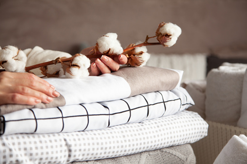 Well groomed woman hands holding the cotton branch with pile of neatly folded bed sheets, blankets and towels. Production of natural textile fibers. Manufacture. Organic product.