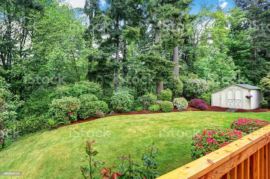 Well Kept Garden At Backyard With Trees, Bushes And Flowers. Royalty Free  Stock