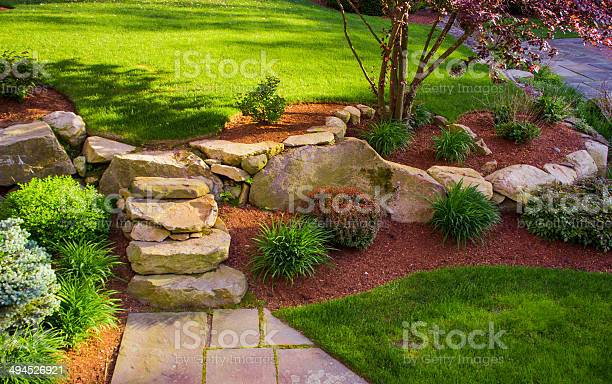 A backyard with a rock wall and rock stairs with a red tree on top.
