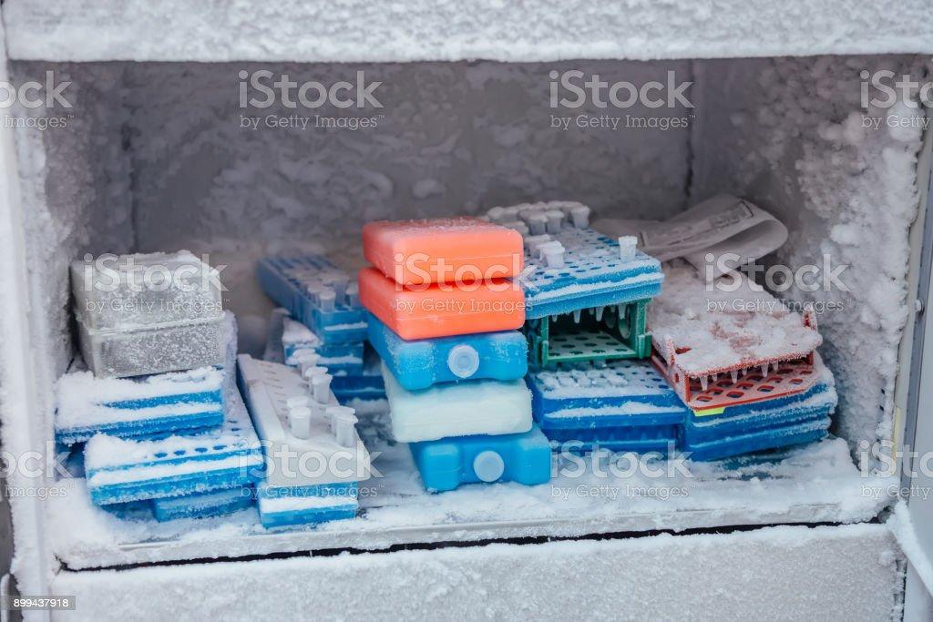 Kühlschrank Platte : Wellplatte mit reagenzgläsern mit gefrorenen dnaproben für die
