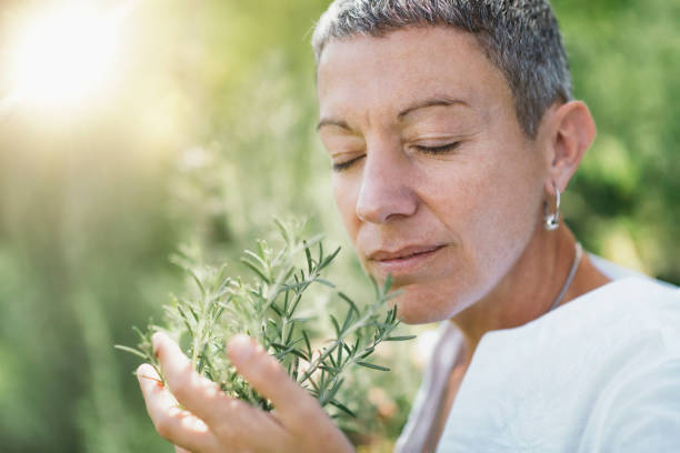 Wellbeing in Nature. Woman Enjoying the scent of Rosemary stock photo