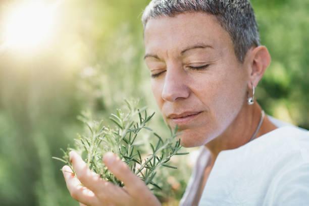 Wohlbefinden in der Natur. Frau genießt den Duft von Rosmarin – Foto