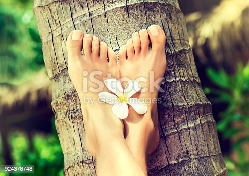 694409862 istock photo Well-groomed crossed woman's feet on palm trunk. Pedicure and spa treatment. 924378748