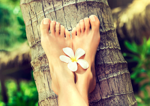 Well-groomed crossed woman's feet on palm trunk. Pedicure and spa treatment. stock photo