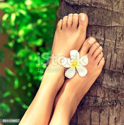694409862 istock photo Well-groomed feet lay on palm trunk. 694409852