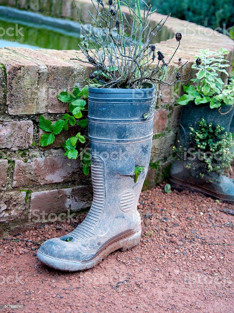 Wellington Boot stock photo