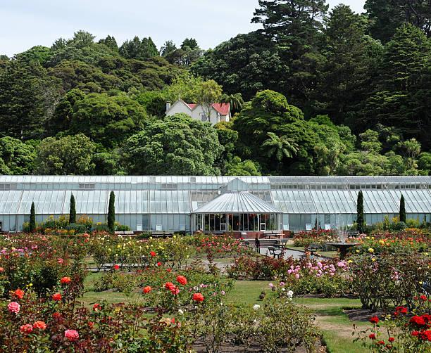 Wellington Botanischen Garten – Foto