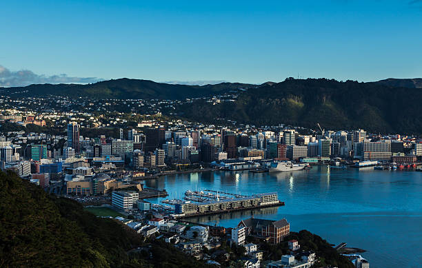 Wellington City The city of Wellington with it's blue harbor. mt victoria canadian rockies stock pictures, royalty-free photos & images