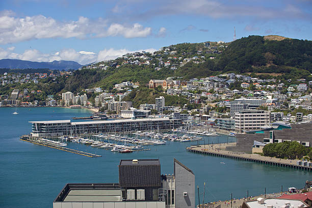 Wellington City Waterfront (Te Papa, Marina, Clyde Quay) Looking across Wellington Harbour from State building towards Clyde Quay Wharf & Marina, Te papa, Mt Victoria, Oriental Beach. mt victoria canadian rockies stock pictures, royalty-free photos & images