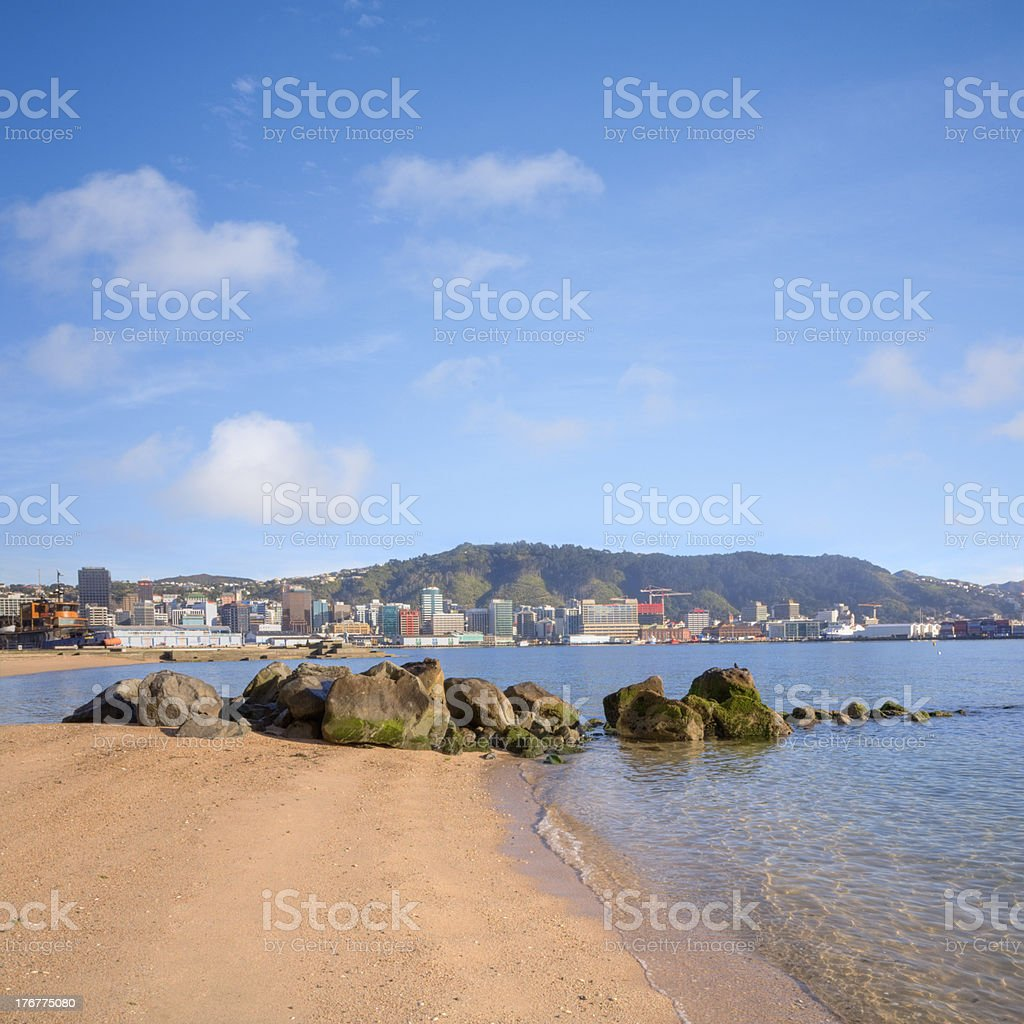Wellington From Oriental Bay New Zealand royalty-free stock photo