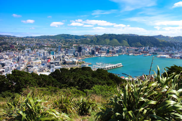 Wellington, New Zealand bay and cityscape as seen from Mount Victoria Wellington bay and cityscape as seen from Mount Victoria. Wellington, New Zealand North Island. wellington new zealand stock pictures, royalty-free photos & images