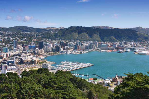 Wellington, New Zealand Wellington, New Zealand - city aerial view of marina and downtown skyscrapers. wellington new zealand stock pictures, royalty-free photos & images