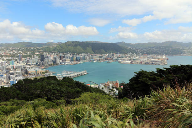 Wellington View of Wellington, New Zealand from the Mount Victoria lookout. Taken in December 2017. mt victoria canadian rockies stock pictures, royalty-free photos & images