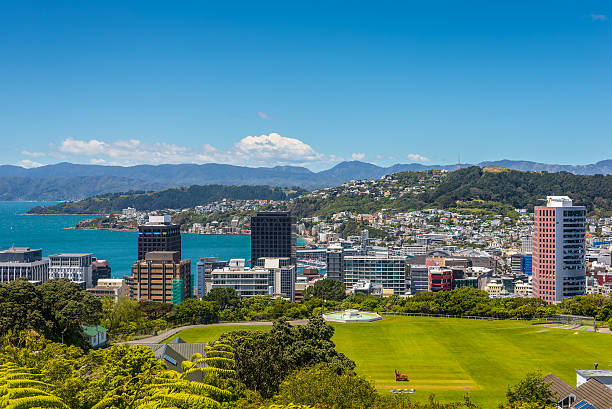 Wellington Skyline Wellington City panorama, with Cricket Field in the foreground, from the top of the Cable Car towards Mt. Victoria, North Island New Zealand. mt victoria canadian rockies stock pictures, royalty-free photos & images