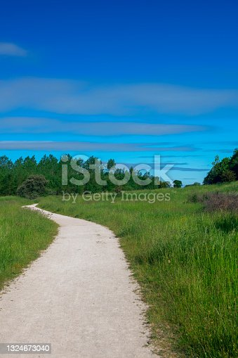 istock A well-maintained gravel footpath leading uphill on a woodland trail near Teversal in Nottinghamshire, England. 1324673040