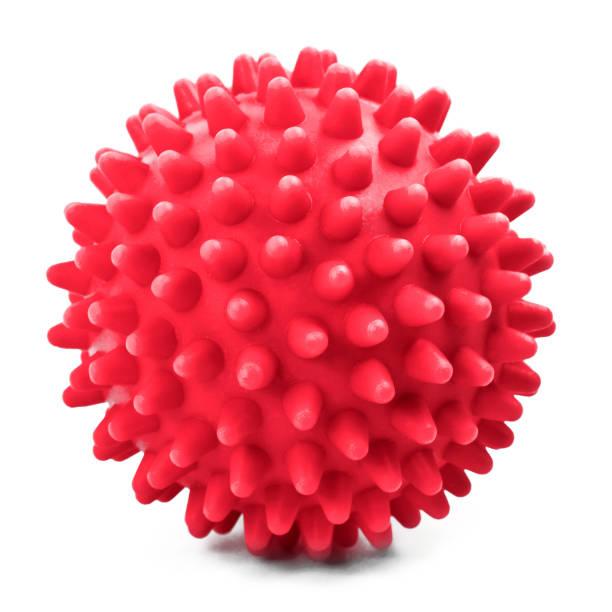 Wellness-und Gesundheitsball – Foto