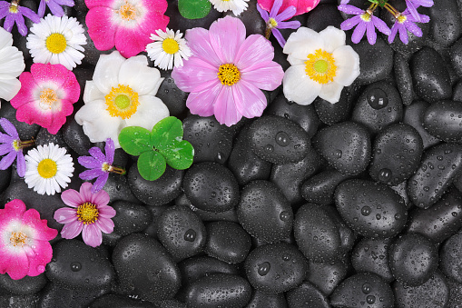 istock Wellness, hot stones and flower background 519024897