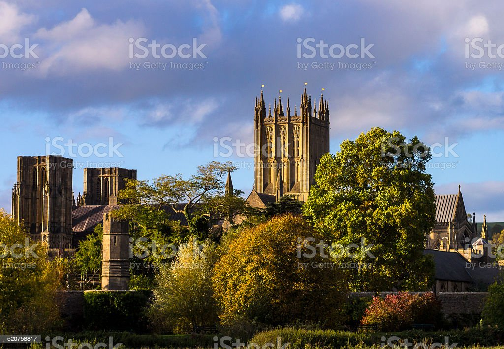 Wells Cathedral from the Fields with Autumn Trees stock photo