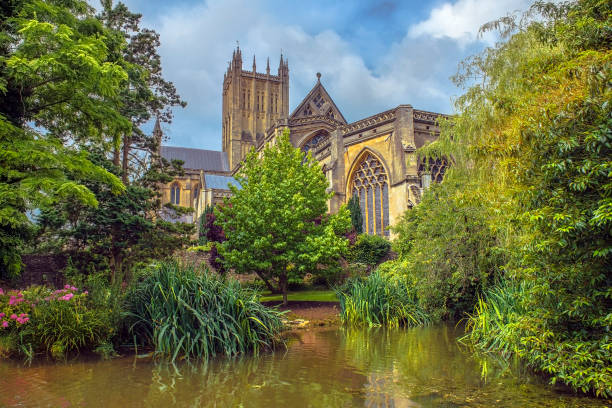Wells Cathedral, Somerset, England Wells Cathedral (Cathedral Church of Saint Andrew), Wells Abbey and park on sunny day, Somerset, England somerset england stock pictures, royalty-free photos & images