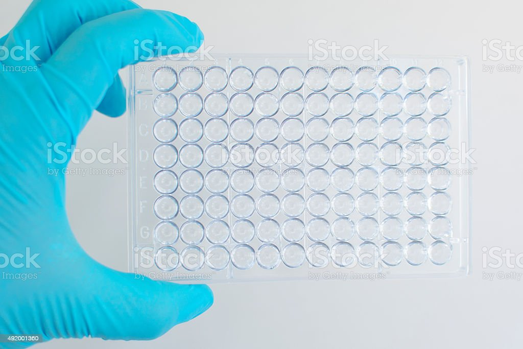 96 wells microplate stock photo