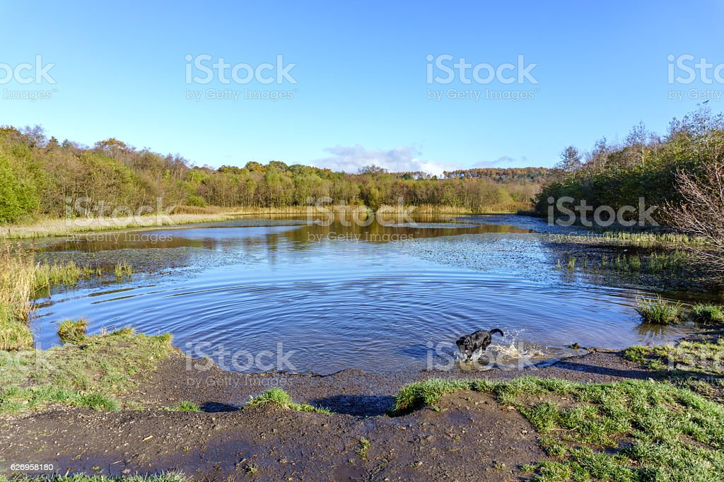 Welsh countryside and lake in Autumn stock photo