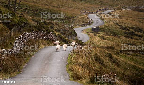 Welsh Mountain Road Stock Photo - Download Image Now