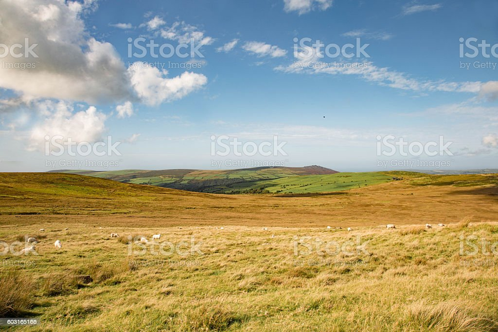 Welsh mountain scene in summer stock photo