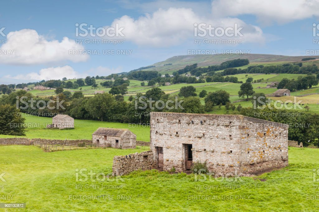 Wensleydale Grange Yorkshire Dales UK - Photo