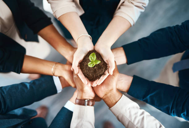 We're all responsible for creating a better tomorrow High angle shot of a group of business colleagues holding a budding plant growing out of soil in their hands environment stock pictures, royalty-free photos & images