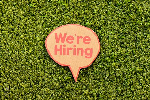 istock we're hiring speech bubble above green grass 1135146009