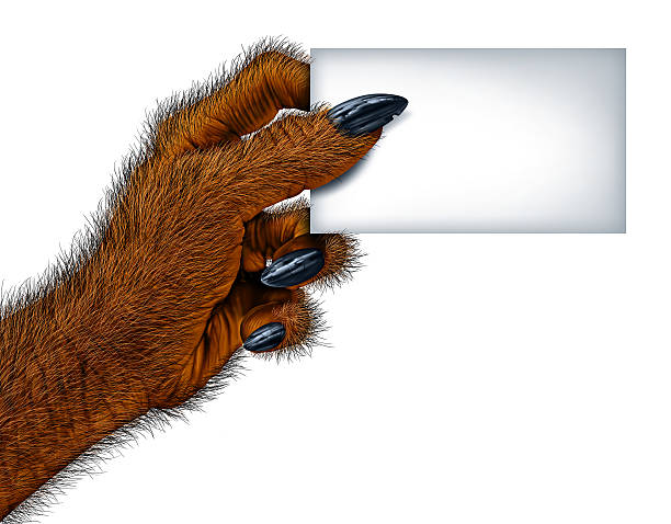 werewolf blank card - cursed stock pictures, royalty-free photos & images