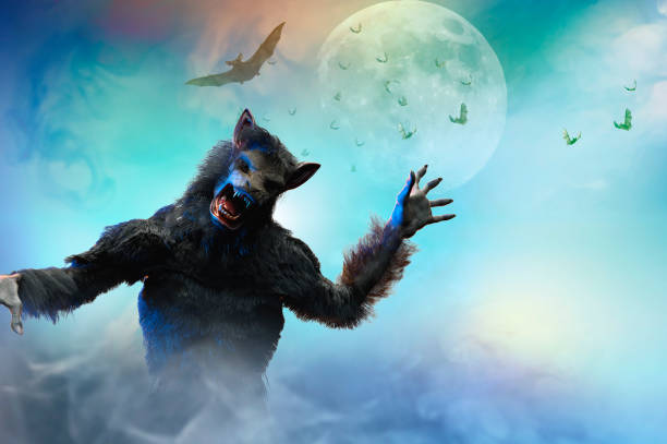 royalty free werewolf pictures images and stock photos istock