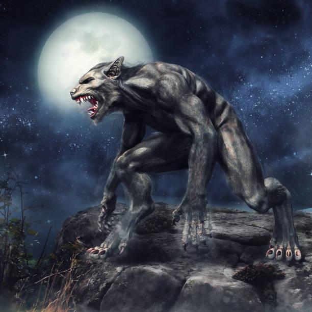Werewolf standing on a cliff picture id1036177858?b=1&k=6&m=1036177858&s=612x612&w=0&h=1u5veovrmeci4f fduldwsrun7ndxf035tav1p2abos=