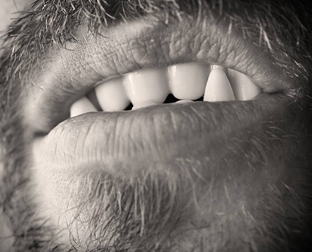 Werewolf Teeth Stock Photo & More Pictures of Animal Hair