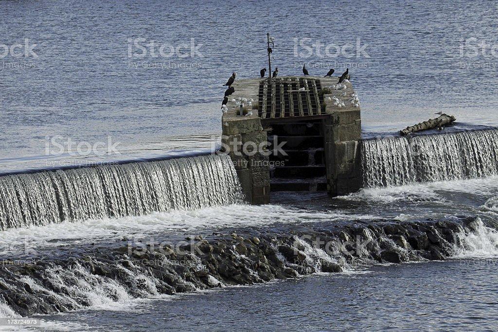 Weser barrage in Hameln stock photo