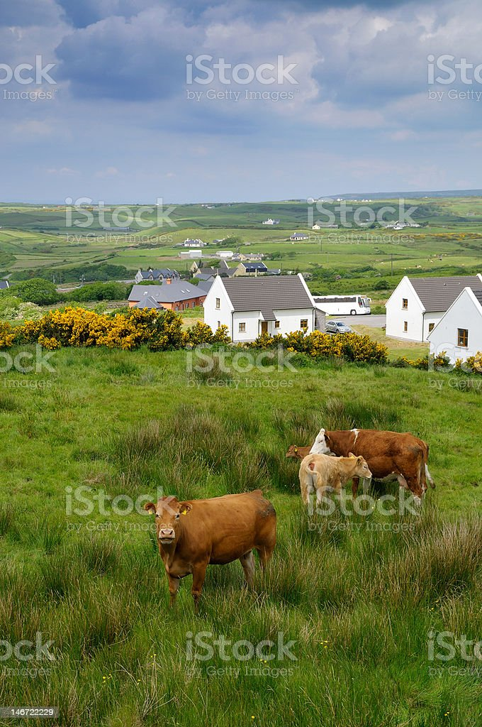 West coast of Ireland in spring stock photo